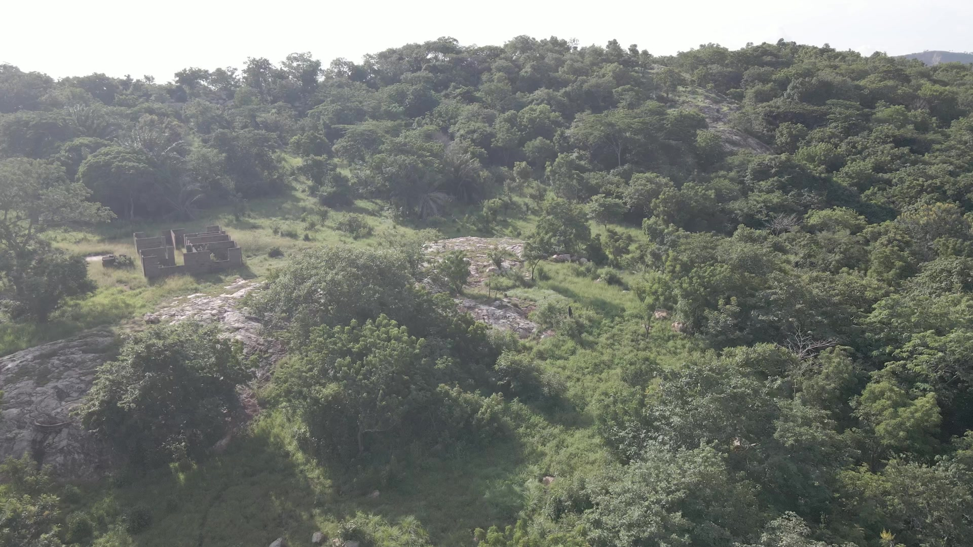 Fly Over Hill Reveal River Vegetation